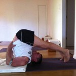 מגמיש את שרירי אורכו של הגב